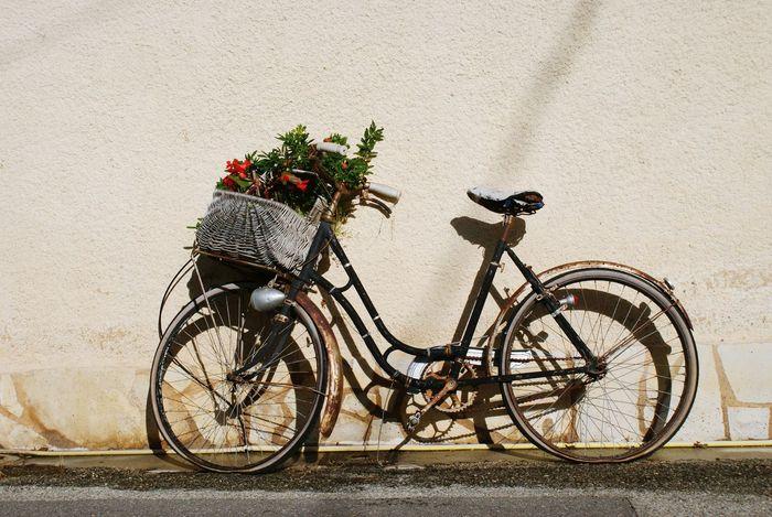 Bike Bicycle Fahrrad France Cotedazur Holiday Flowers Garden Urlaub Traveling Travel Summer Warm Old RatRod Romantic Patina Classic Retro Style Retro Style Lieblingsteil