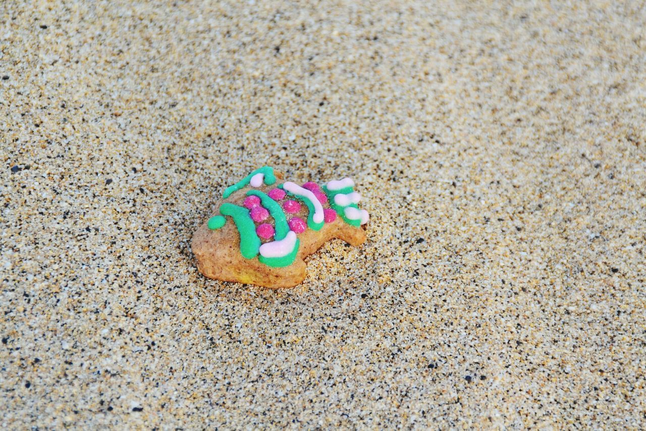 Sand Multi Colored Beach No People Outdoors Close-up Day Fish Biscuit Fish Biscuit Colors Colours