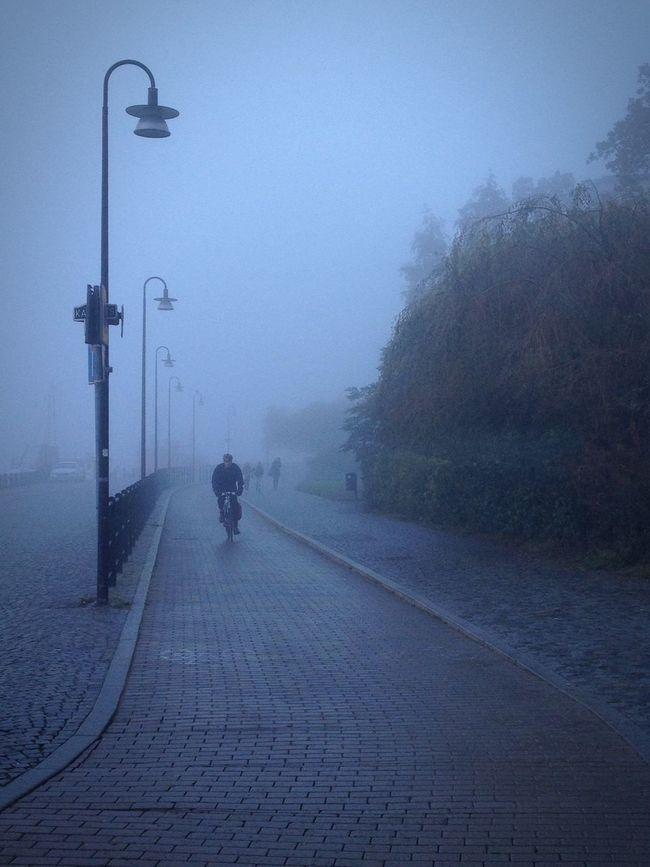Autumn Is Here...Fall Mood! Södermalm Stockholm Fog Autumn Colors