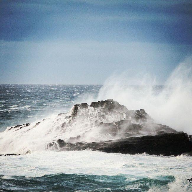 Todo poco a poco va dejando de Importar , todo menos esos Paraisos en el Mar y Navegar y navegar y navegar. Fito Paez Tapiadecasariego Asturias Cantábrico