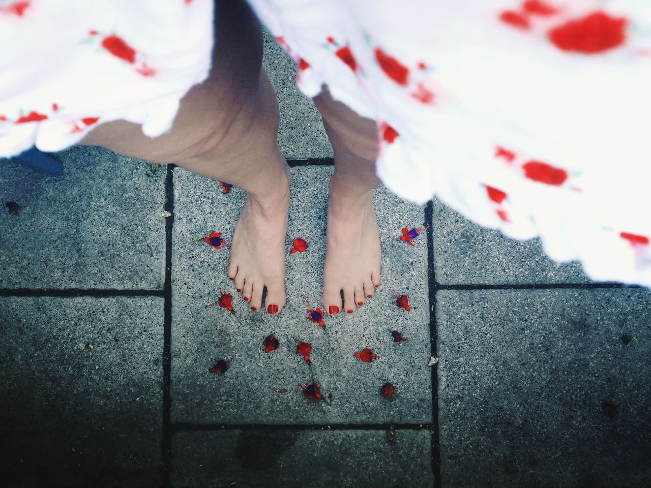 Fallen flowers... Low Section Human Leg One Person Barefoot Human Body Part People One Woman Only Red One Young Woman Only Flowers Red Flowers Runner Runners View Feet Red Nails Looking Down Neon Life EyeEm Selects