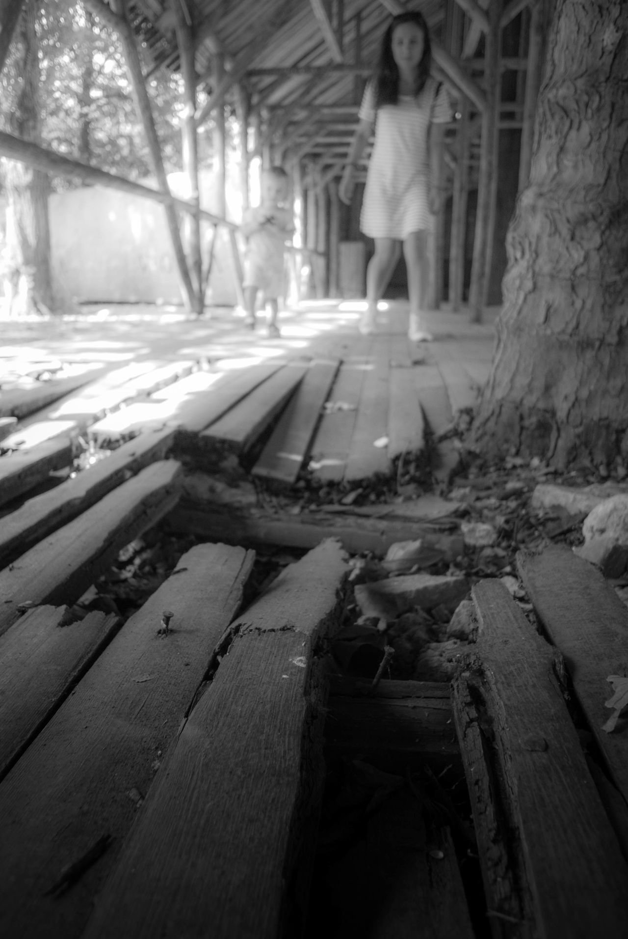 Black And White Boardwalk Broken Floor Cracked Floordboards Creepy Day Leisure Activity Lifestyles Low Section Moth One Person Outdoors Real People Standing The Way Forward Tree Women