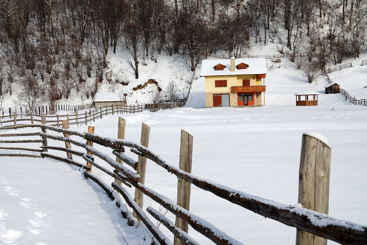 snow, winter, cold temperature, weather, white color, nature, frozen, white, tree, snowing, beauty in nature, outdoors, no people, field, landscape, scenics, day, built structure, snowdrift, bare tree, architecture
