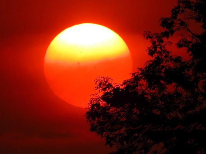 Atardeceres Borgiante Cielo Ciudad De México Mexico Sky Sol Sun Sun Light Sunset
