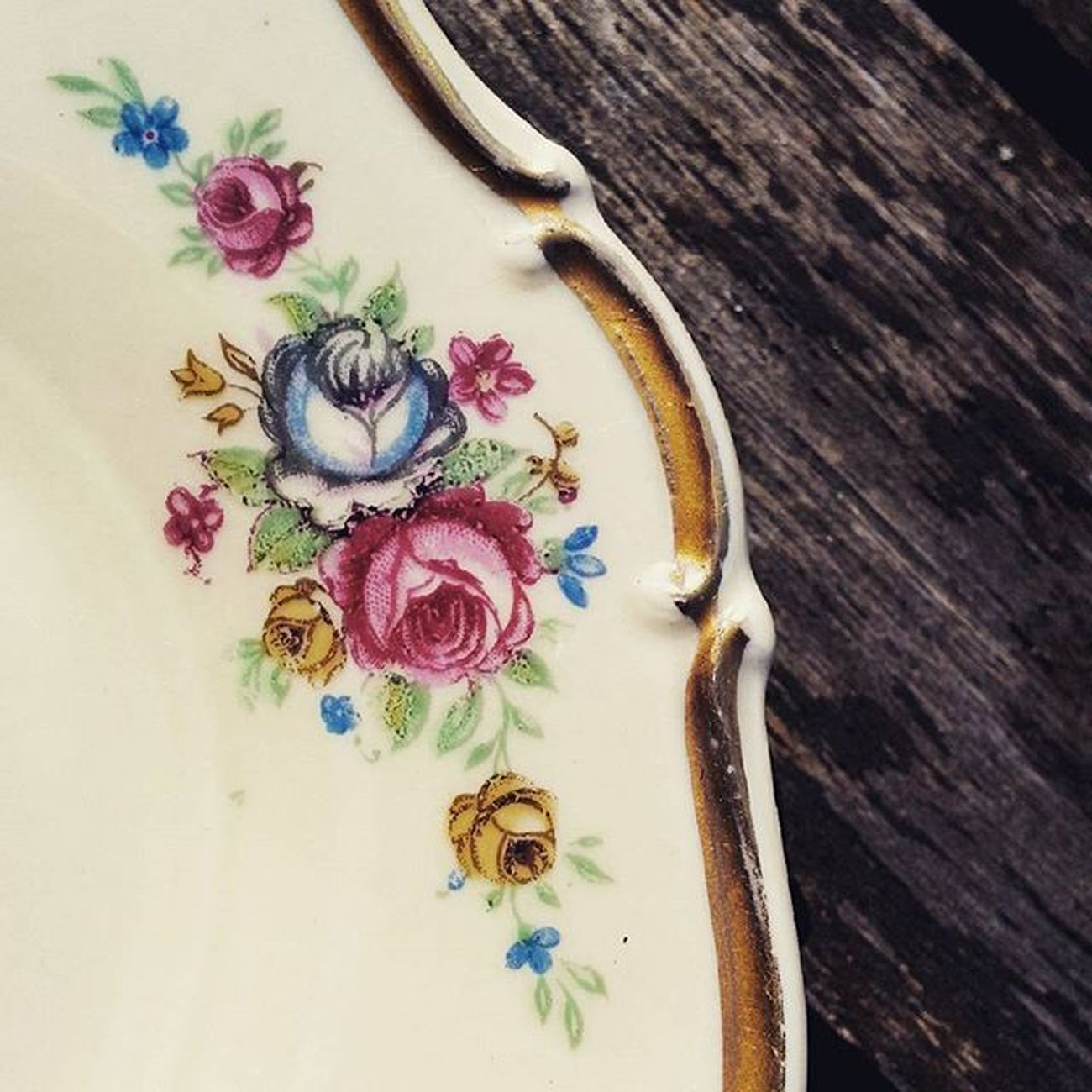 Vintage Roses Colors Coffee Saucer Oldporcelain Closeup