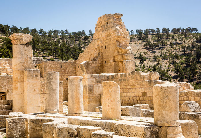 Alahan Monastery Ruins Alahan Alahan Monastery Ancient Ancient Civilization Archaeology Architectural Column Architecture Built Structure Byzantine Architecture Christianity History Icons Monastery Mut Old Ruin Religious Architecture Religious Art Religious Icons Sky Stone Carving The Past Travel Destinations Tree
