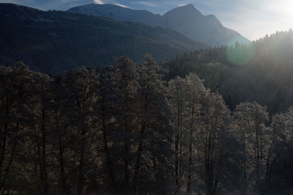 Day Fog Forest Geology Hill Landscape Mountain Mountain Range Nature No People Non-urban Scene Ray Remote Saint Gervais Scenics Tranquil Scene Tranquility Tree