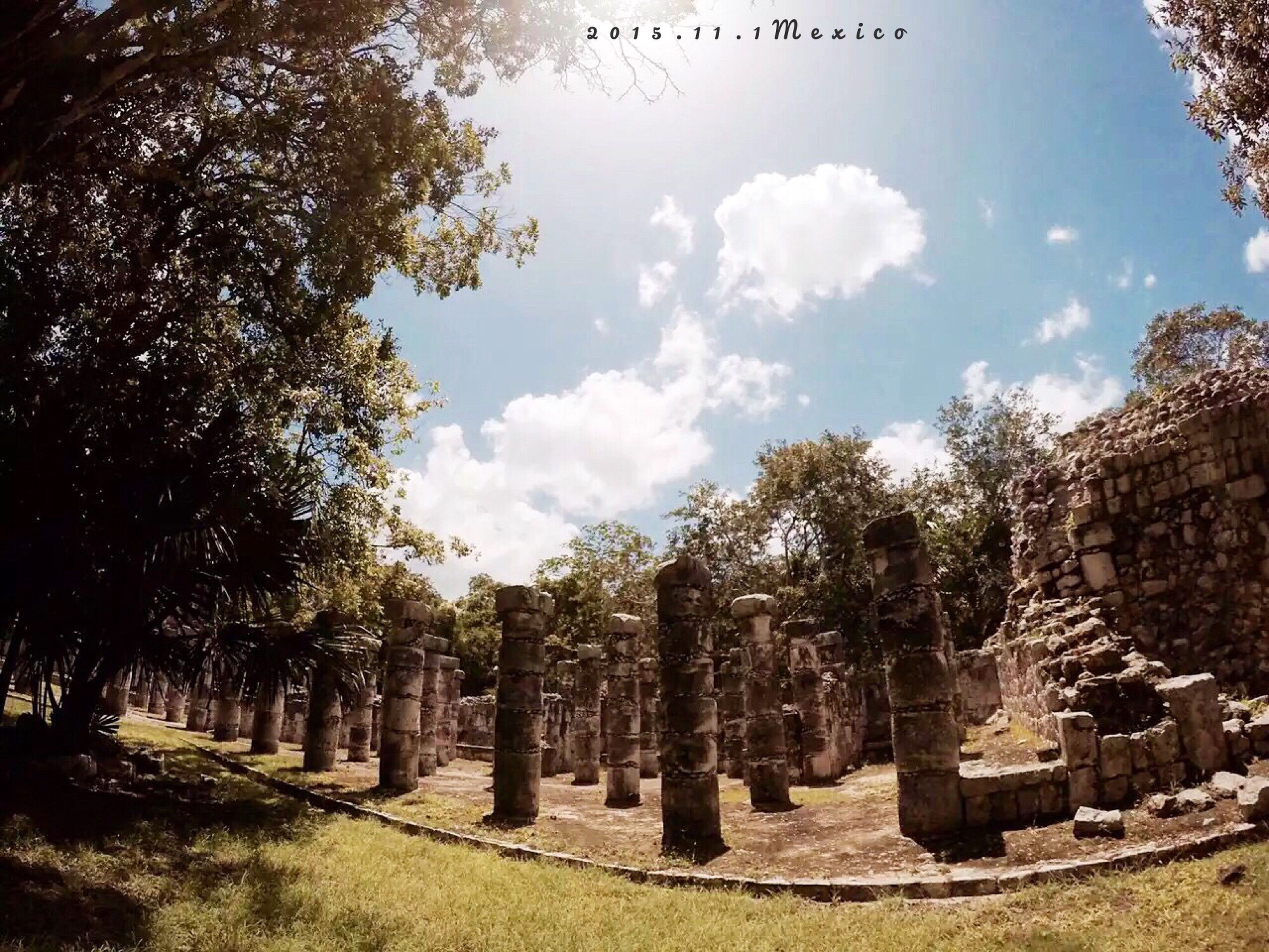 tree, sky, tranquility, growth, cemetery, old, tombstone, the past, built structure, history, nature, old ruin, day, field, architecture, ancient, outdoors, cloud - sky, no people, tranquil scene