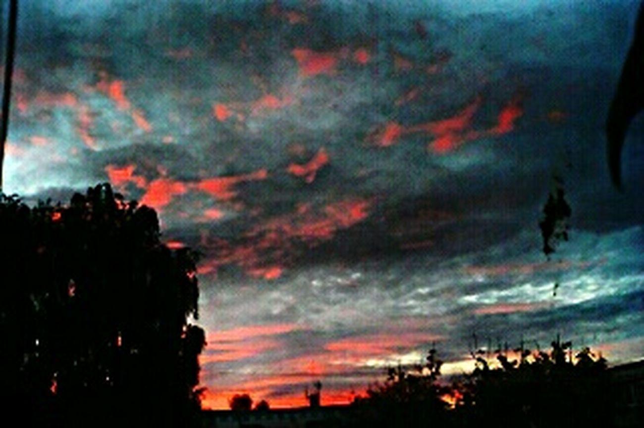 вид из окна видизокна Закат закат🌇 мгла EyeEm Best Shots EyeEm Gallery Sunset Sunset_collection Shades Of Grey