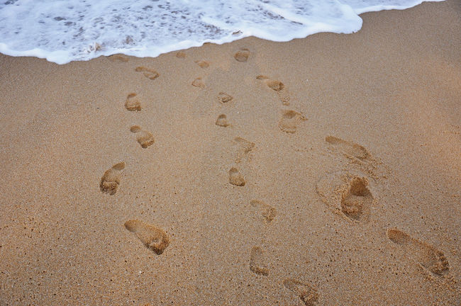 Children footsteps on sand sea beach Beach Coastline FootPrint Fun Having A Good Time Having Fun High Angle View Nature Outdoors Sand Scenics Sea Seaside Shore Summer Surf Tide Tourism Tranquil Scene Tranquility Travel Travel Destinations Vacations Water Wave