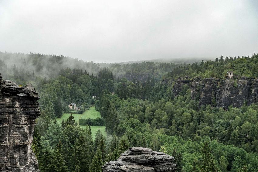 Bielathal Dramatic Sky Elbsandsteingebirge Sächische Schweiz Climbing Foggy Green Color Landscape