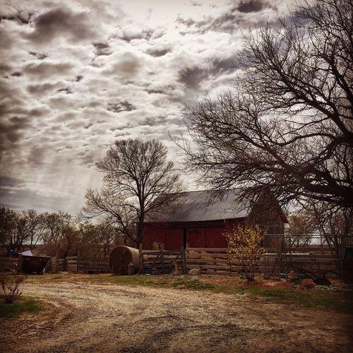 The farm. First Eyeem Photo