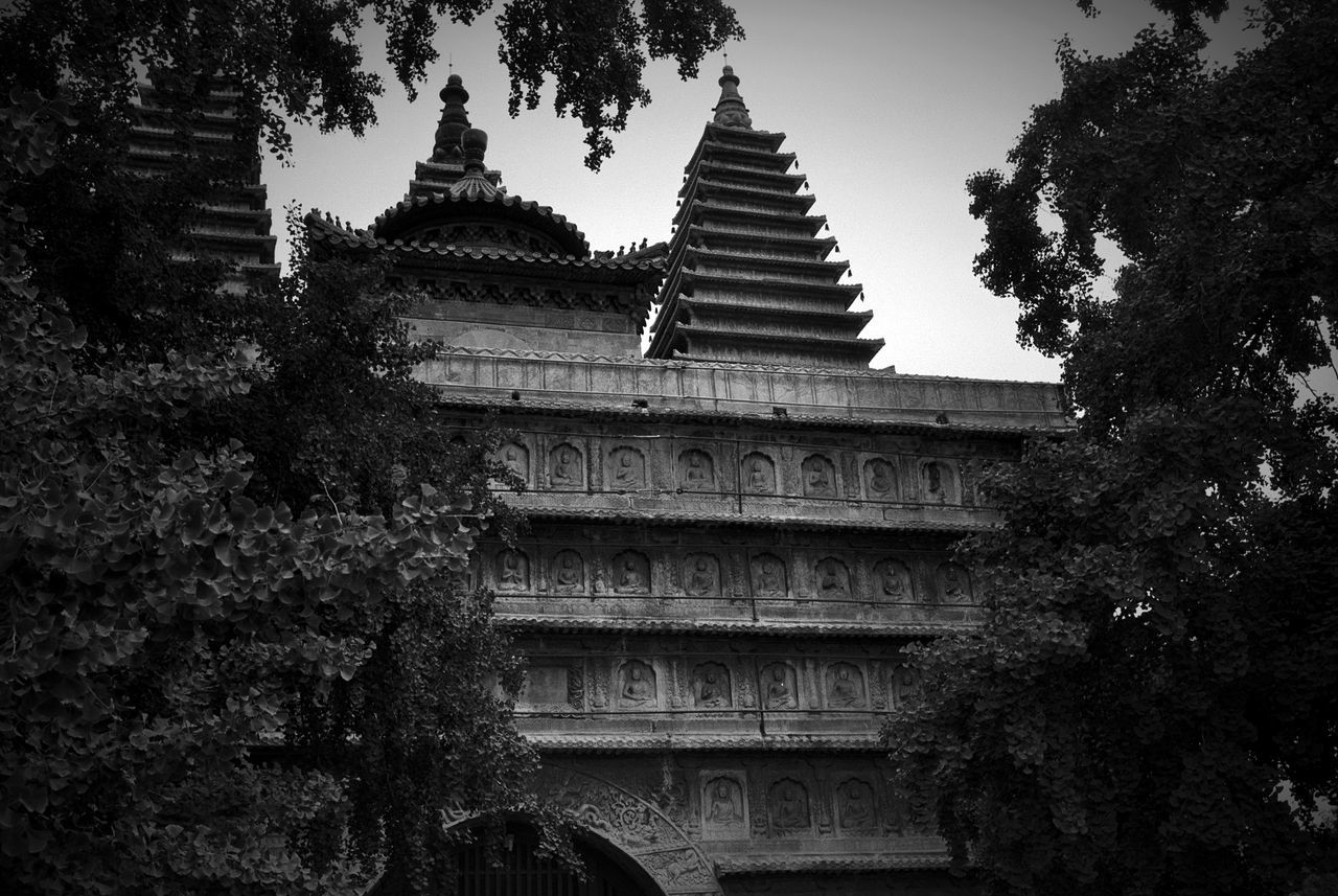 architecture, tree, religion, building exterior, built structure, place of worship, spirituality, pagoda, travel destinations, day, outdoors, no people, low angle view, sky, nature