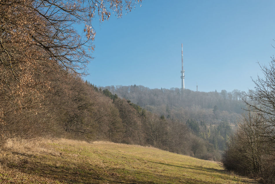 Architecture Bare Tree Beauty In Nature Built Structure Clear Sky Communication Day Funkstation Nature No People Outdoors Radio Tower Scenics Sky Technology Tranquility Tree TV Tower