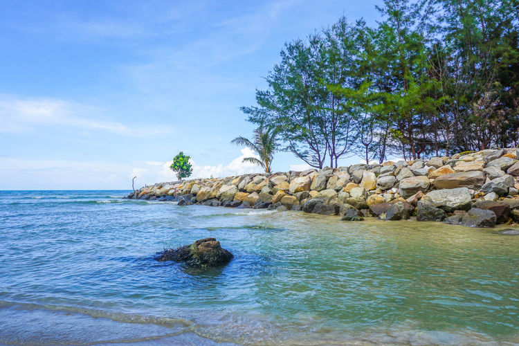 Stone embankment near sea shore with tropical tree in Labuan Pearl Of Borneo,Malaysia.Stone embankment to prevent the waves of the sea also ensure watertightness,support & stabilization. Avoid Disaster Landscapes Protection Sea Wall Stone Stone Embankment SUPPORT Waves Waves Crashing Waves Crashing On Rocks Waves Splashing Waves, Ocean, Nature