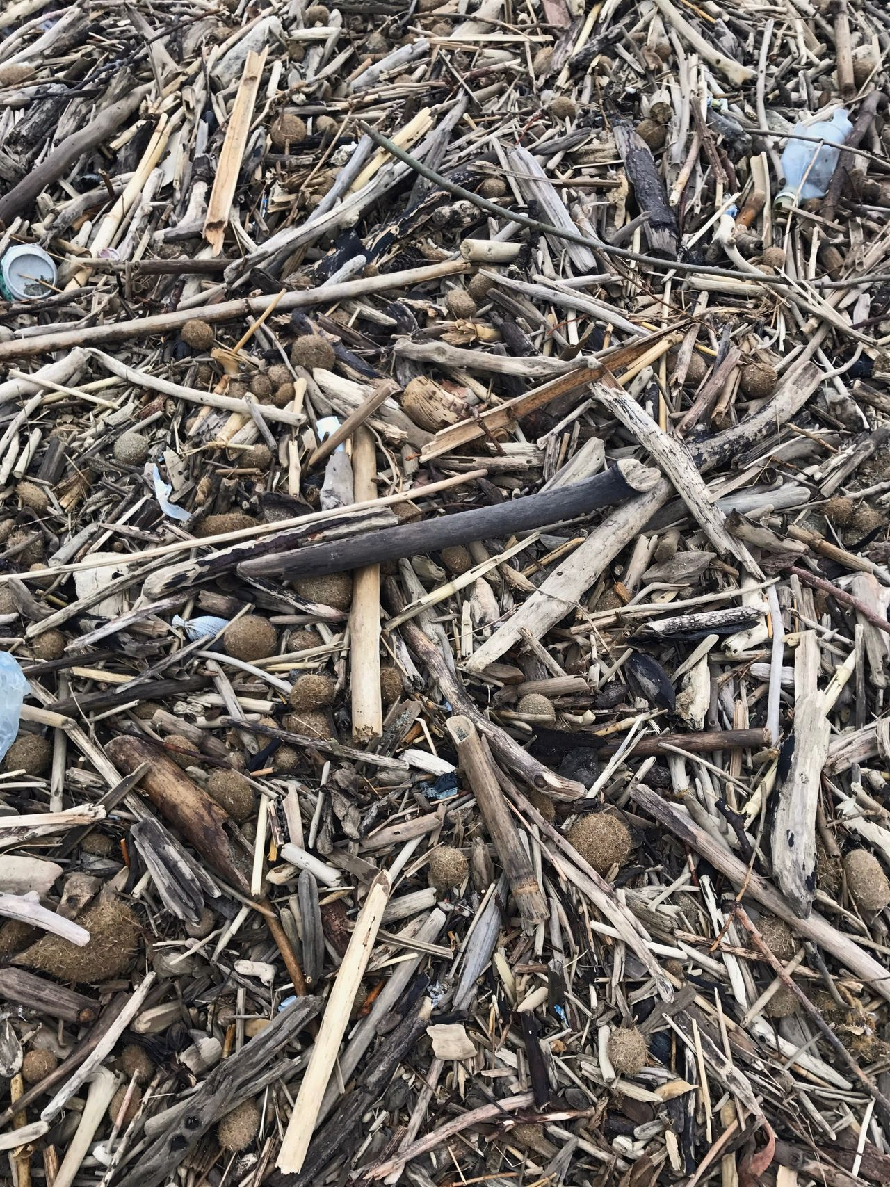 Full Frame High Angle View Backgrounds Abundance Dried Fish  Outdoors No People Large Group Of Objects Dried Day Salted Close-up Nature Stick