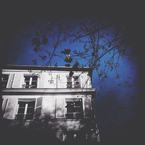 2/5 of 5 Shot Colour Splash Challenge Lookingup Global EyeEm Adventure -Paris- Bonjour Paris