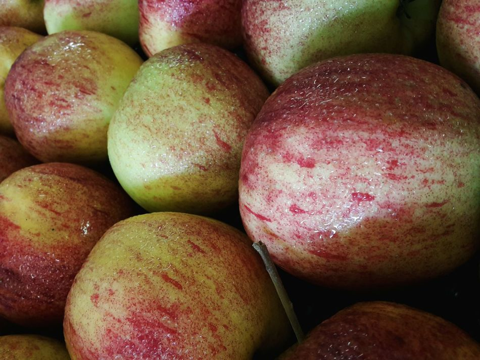 Apple Apples Fruit Netherlands Jona Gold Healthy Healthy Food Everyday Food