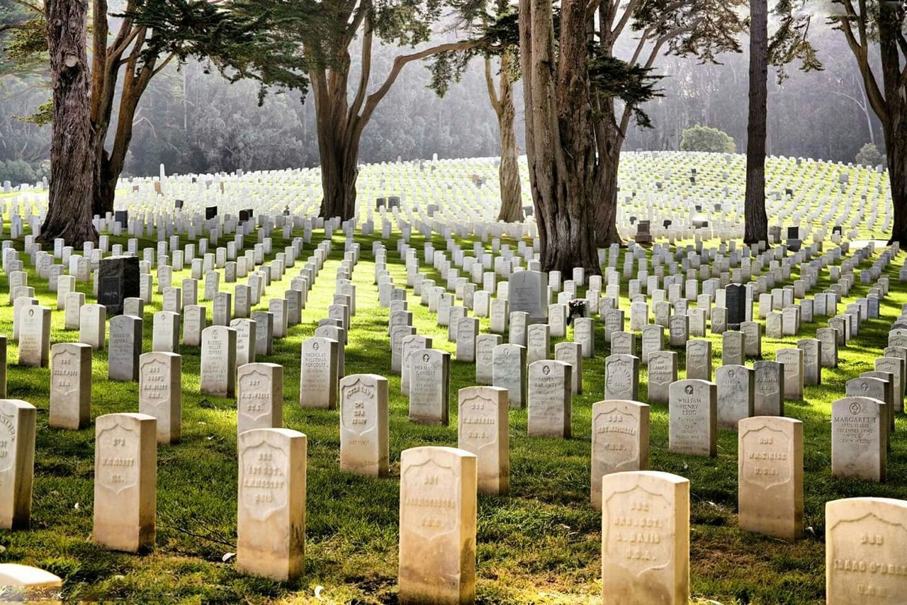 cemetery, tombstone, memorial, gravestone, in a row, graveyard, grave, the past, tree, sadness, war, military, patriotism, day, no people, outdoors, spirituality, large group of objects, cross, grass