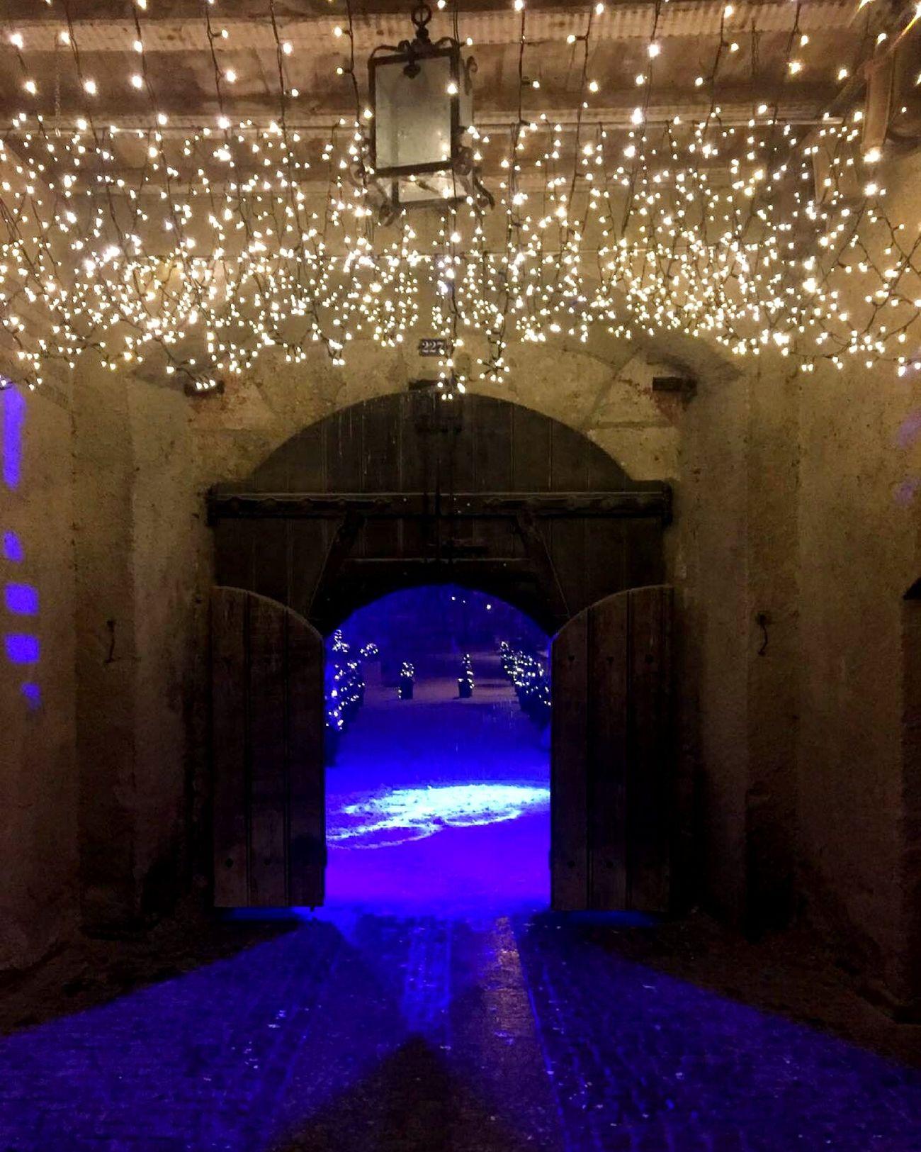 Rheinfall Door Light Schnee Beleuchtung Bambekosfotografia Blau Switzerland Traveling Home For The Holidays Europa.Photos.Collection.Eyeem© Rheinfall Schaffhausen/Schweiz