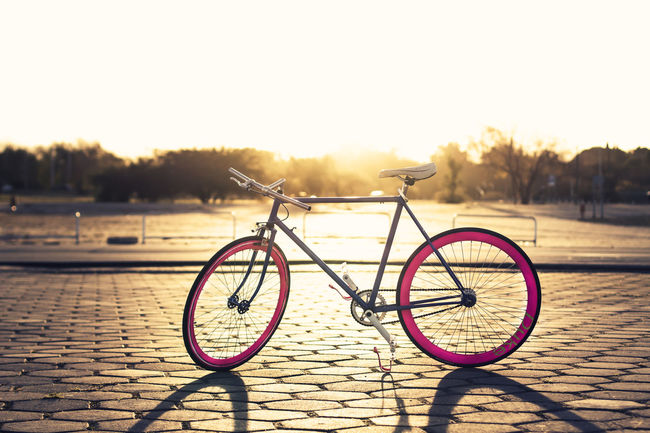 50mm 1.4 Afternoon Beautiful Light Bicycles Blue Bycicle Contrast Details Landscape Lens Light And Shadow Natural Light Nature No People Non-urban Scene Pink Product Shadows & Lights Sport Sports Photography Sun Sunlight Sunny Sunset Sunset #sun #clouds #skylovers #sky #nature #beautifulinnature #naturalbeauty #photography #landscape