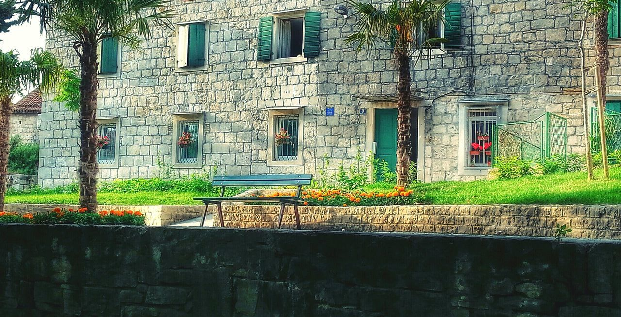 architecture, building exterior, built structure, window, outdoors, day, no people, plant, growth, tree