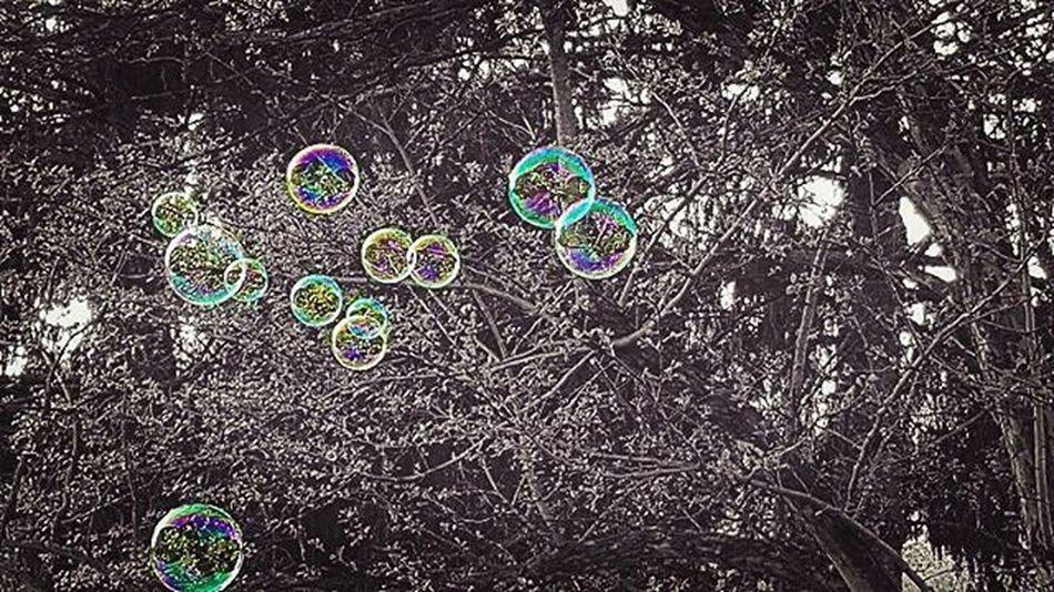 Beautiful Blackandwhite Color Bubbles Bubble Lightasafeather Floating Sunday Random Inspirationstruck Filter Fromthebalcony