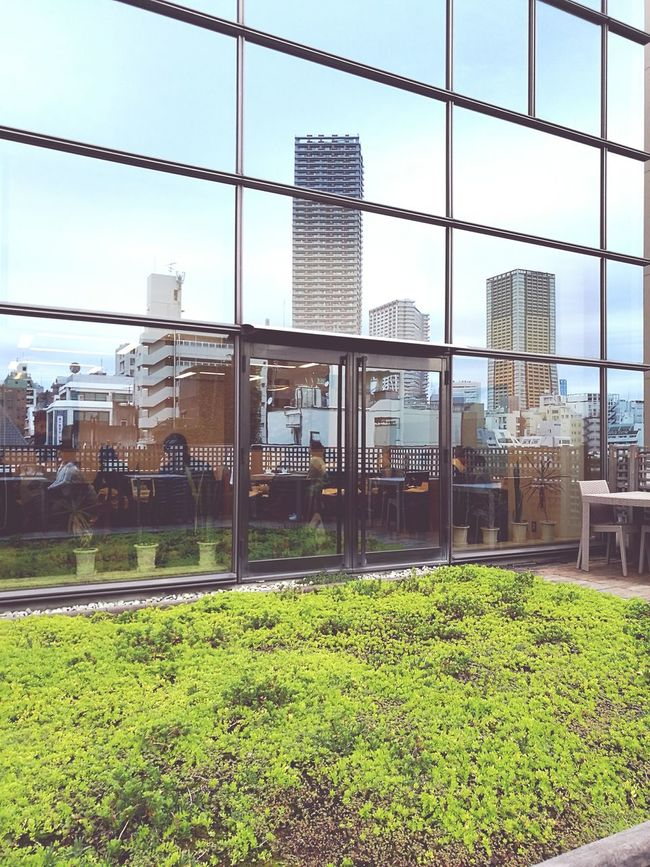 Architecture Built Structure Building Exterior Grass City Green Color Day Lawn Sky Outdoors Tall - High Office Building Modern Tall Skyscraper No People Bookstore Booking A Room Books ♥ Books Book Book Store