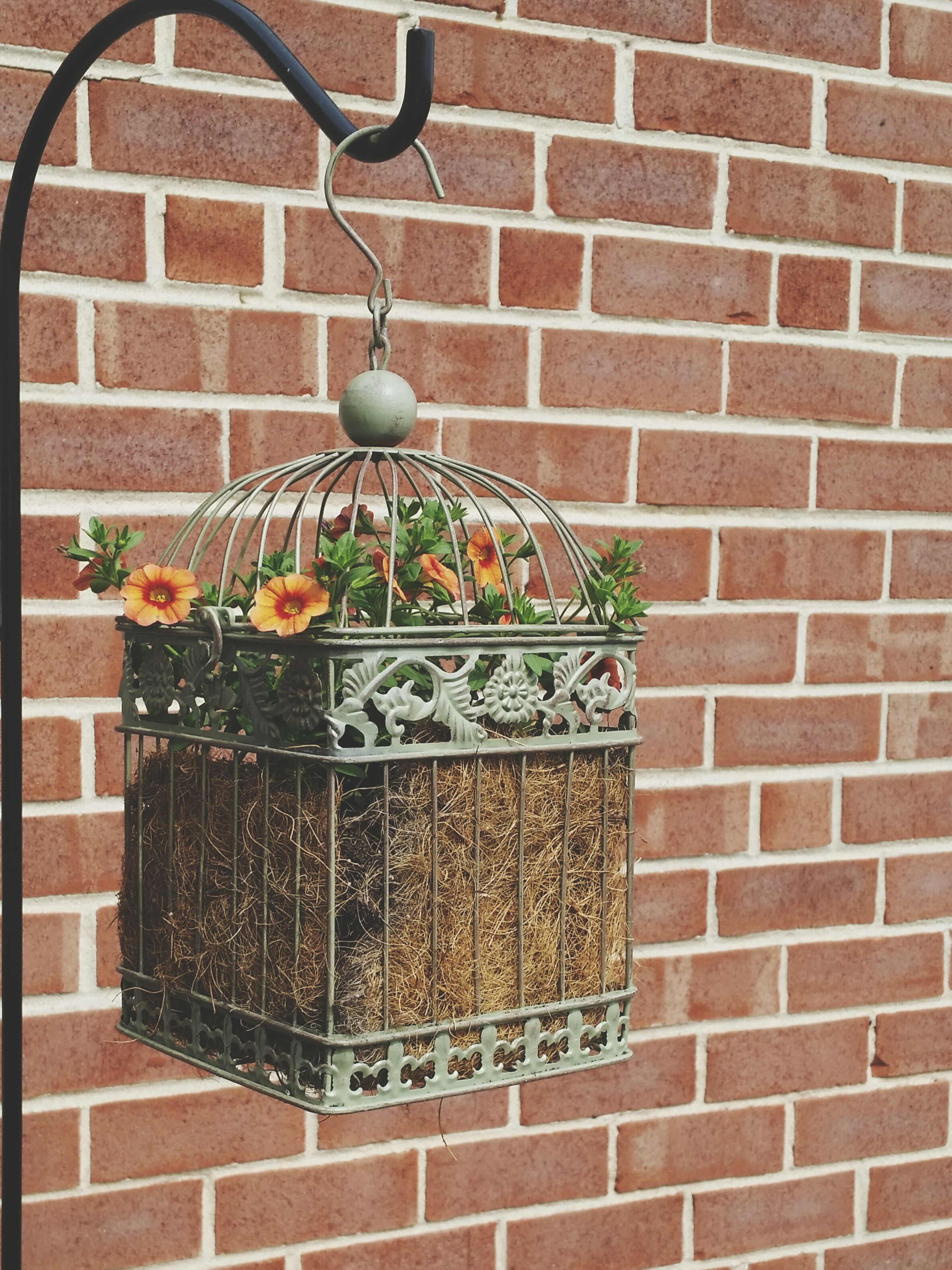 brick wall, wall - building feature, architecture, built structure, potted plant, building exterior, wall, flower, hanging, plant, decoration, flower pot, growth, lantern, no people, day, outdoors, stone wall, lighting equipment, close-up