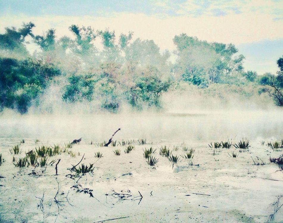 туман кировское днепр штефан