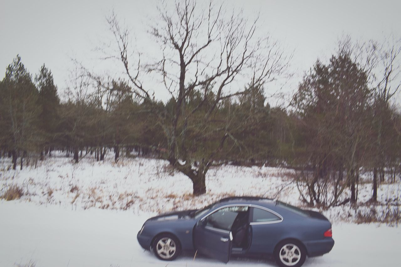 car, tree, transportation, no people, snow, winter, nature, day, cold temperature, outdoors