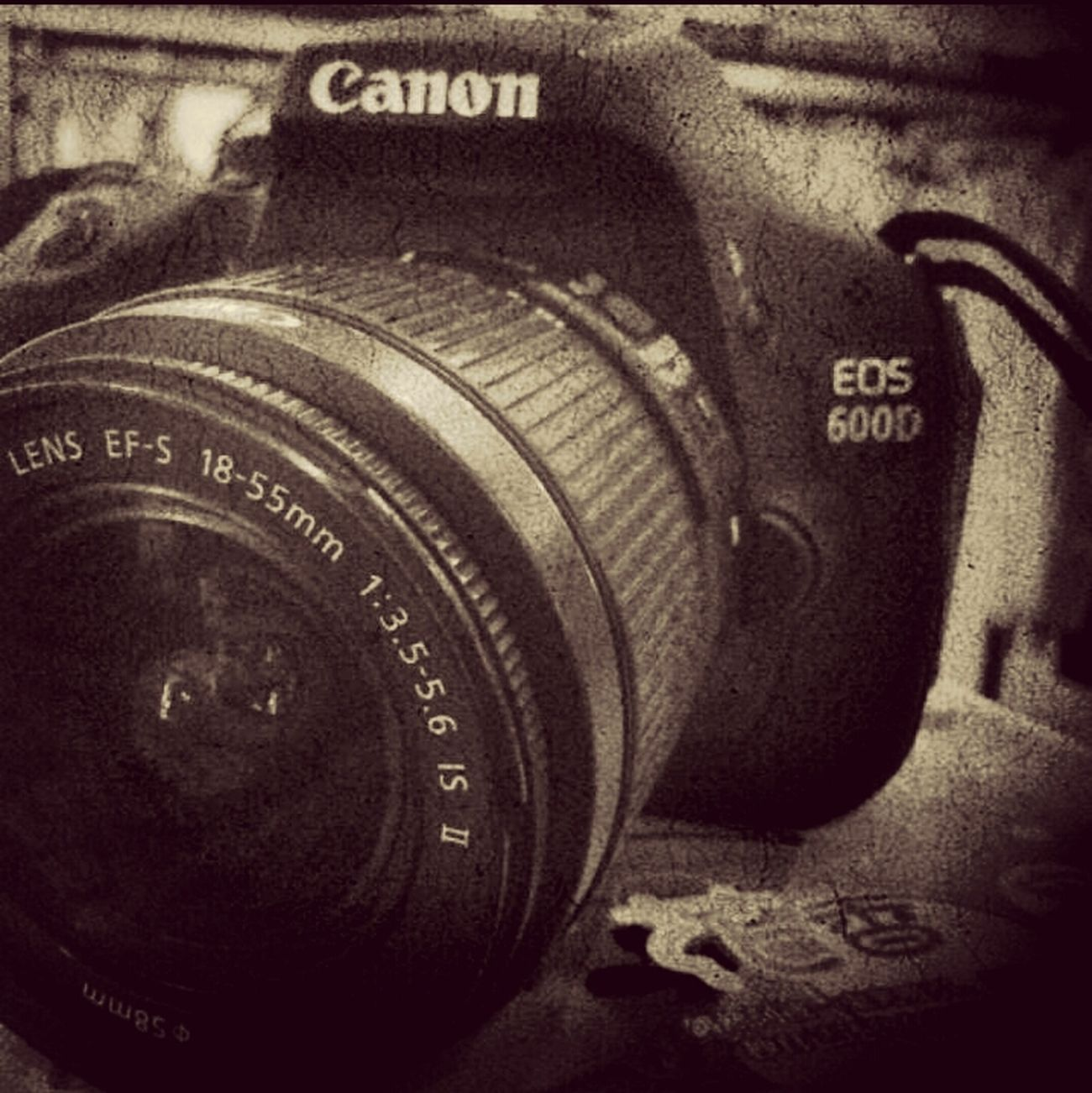 Eye4photography  Canon ~*
