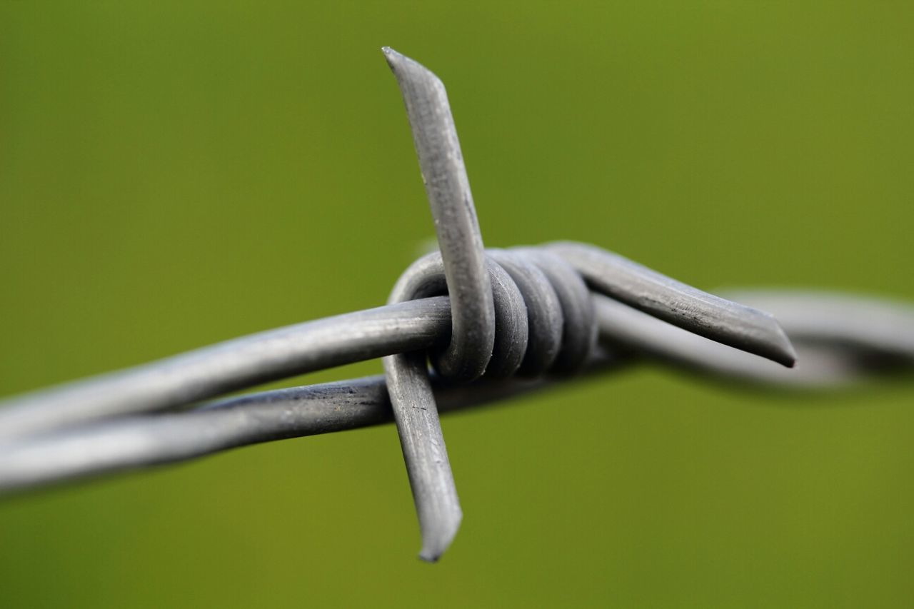 barbelé Macroclique Macro Barbed Wire
