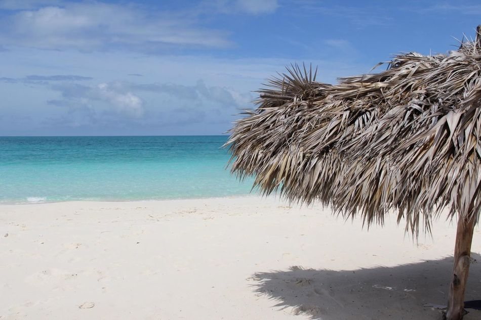 Beautiful stock photos of hawaii, Beach, Caribbean, Coast, Copy Space