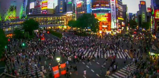 Sibuya Cityscapes Night Lights Japan