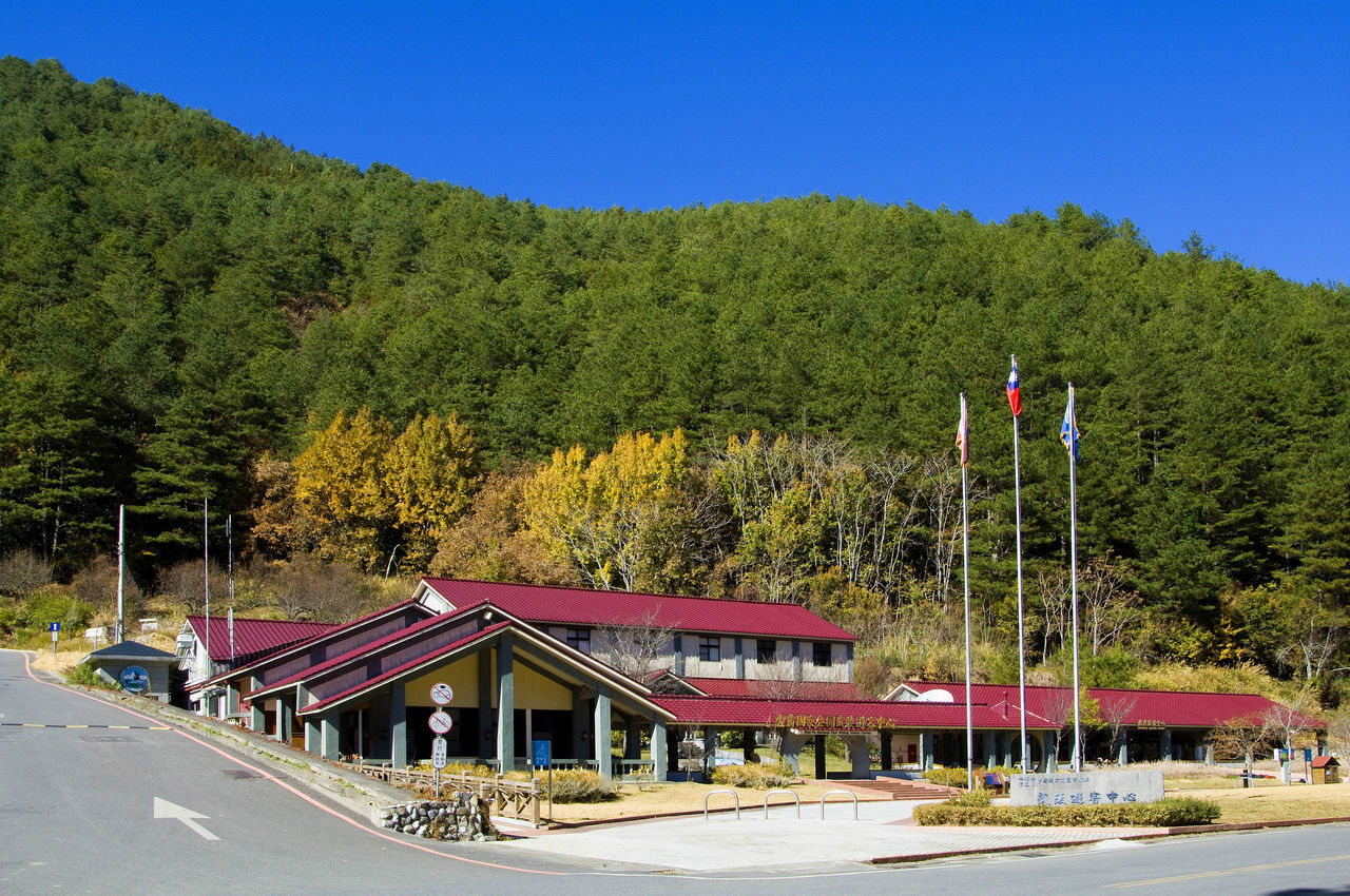 Architecture Autumn Beauty In Nature Building Clear Sky Day Fall Flag Go Sightseeing Green Color Growth Hills Landscape Leisure Life Maple Mountain Nature No People Outdoors Travel Tree Tree