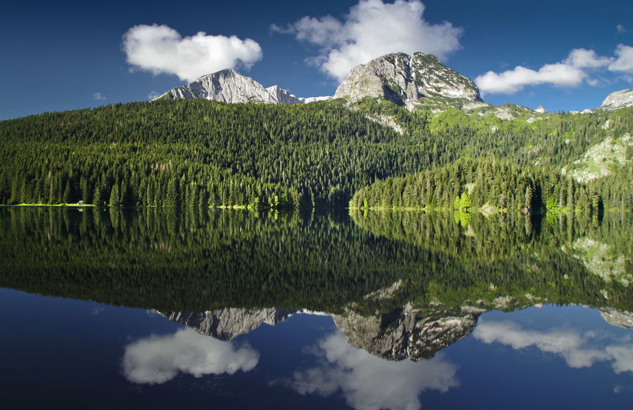 Beauty In Nature Cloud - Sky Crno Jezero Day Durmitor, Montenegro Green Color Growth Lake Mountain Mountain Range Nacionalni Park Durmitor Nature No People Outdoors Reflection Scenics Sky Tranquil Scene Tranquility Water Waterfront