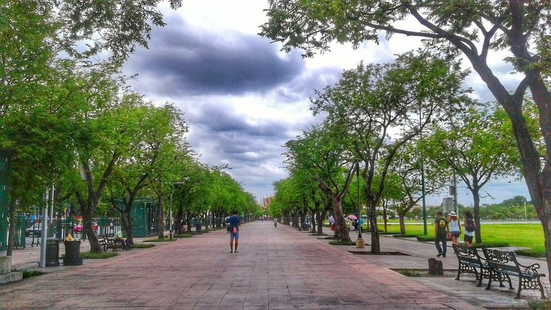 City City Park Travelgram Travelling Thailand Traveller Tree Cloud - Sky Sky Nature Outdoors Scenics Day Beauty In Nature Bangkok Streetphotography Bangkok Thailand. Beauty In Nature Adult People