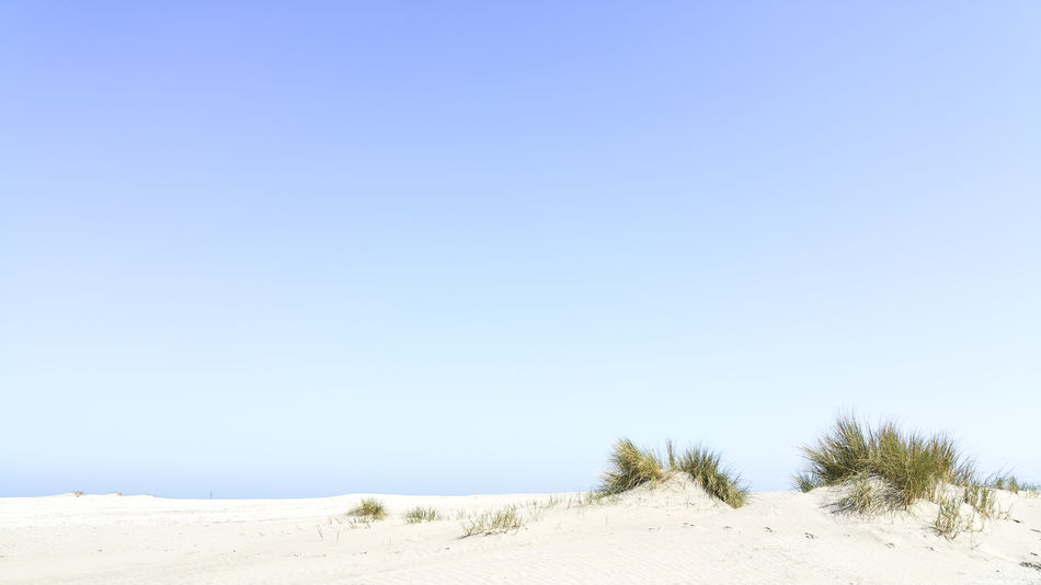 EyeEm Nature Lover EyeEm Gallery Grass Nature Photography Tranquility Beach Beauty In Nature Blue Blue Sky Clear Sky Copy Space Dune Landscape Nature Nature_collection Sand Sand Dune Sea Sunny Tranquil Scene