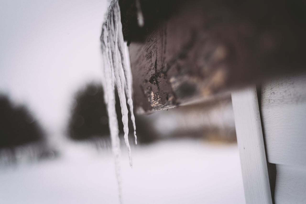 Close-up Cold Temperature Day Frozen Icicles Icicles Hanging No People Selective Focus Snow Winter Winter Wintertime