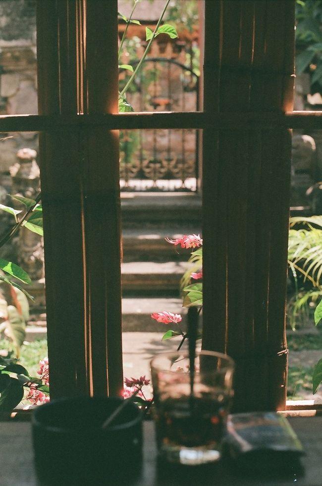 a secret spot in ubud for a tea or smoke Showcase: December Analog Film Analogue Photography 35mm Film Filmisnotdead Film Photography CanonFTQL Ubud Bali Streetphotography Freelance Life Canon Window Flowers Coffee Tea Cafe Window View Window Sill Moody Bali, Indonesia Interior Views My Favorite Place