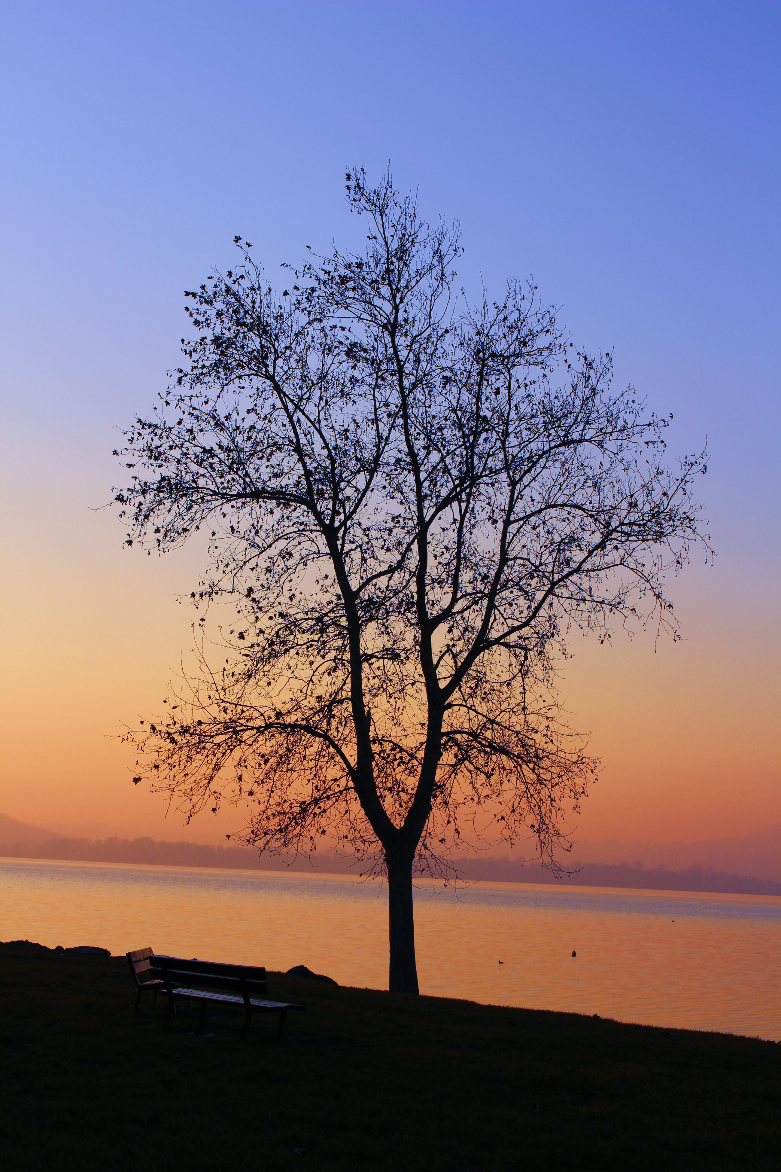 sea, sunset, horizon over water, water, nature, beauty in nature, tranquil scene, tranquility, no people, sky, scenics, beach, outdoors, day