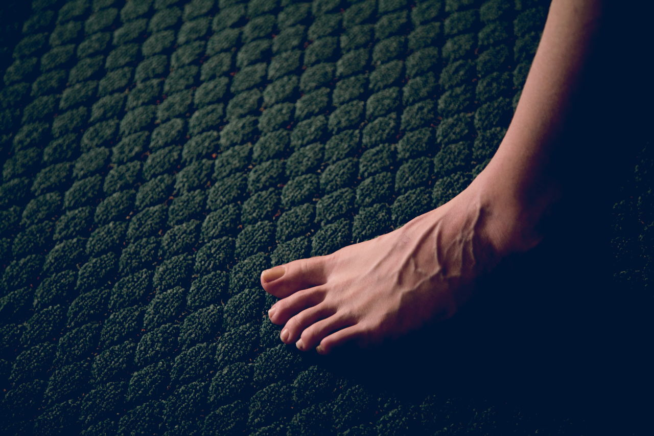 Nik's early morning foot portrait. I love the veins! Adult Barefoot Carpet Close-up Darkness And Light Detail Family Feet Foot Green Human Body Part Human Leg Indoors  Kisses Love Low Section Lowlight One Person People Portrait Real People Toes Veins Women