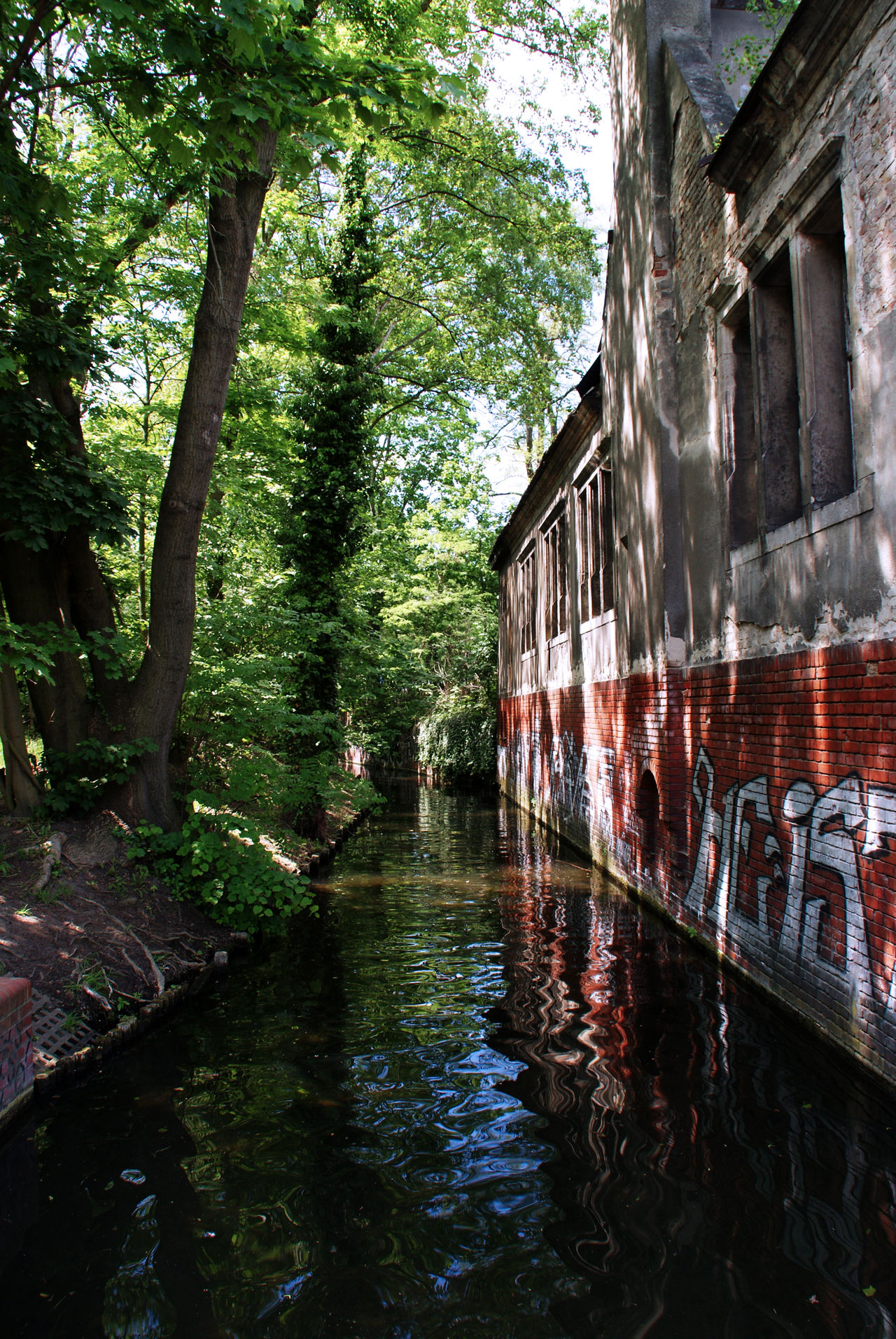 Architecture Beauty In Nature Building Exterior Built Structure Calm Water Calmness Day Graffiti Graffiti Art Growth Nature No People Outdoors Reflection Street Art Tranquility Tree Water Waterfront
