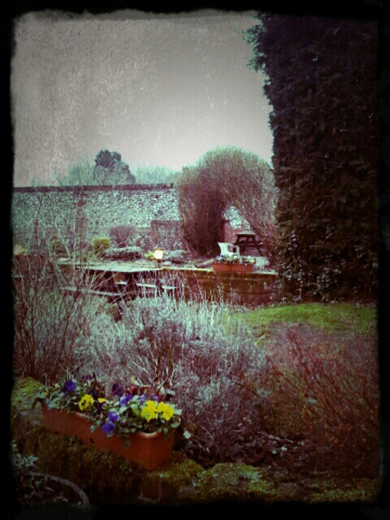 Hidden Gems  Secret Garden Hidden Places Hanging Out Taking Photos