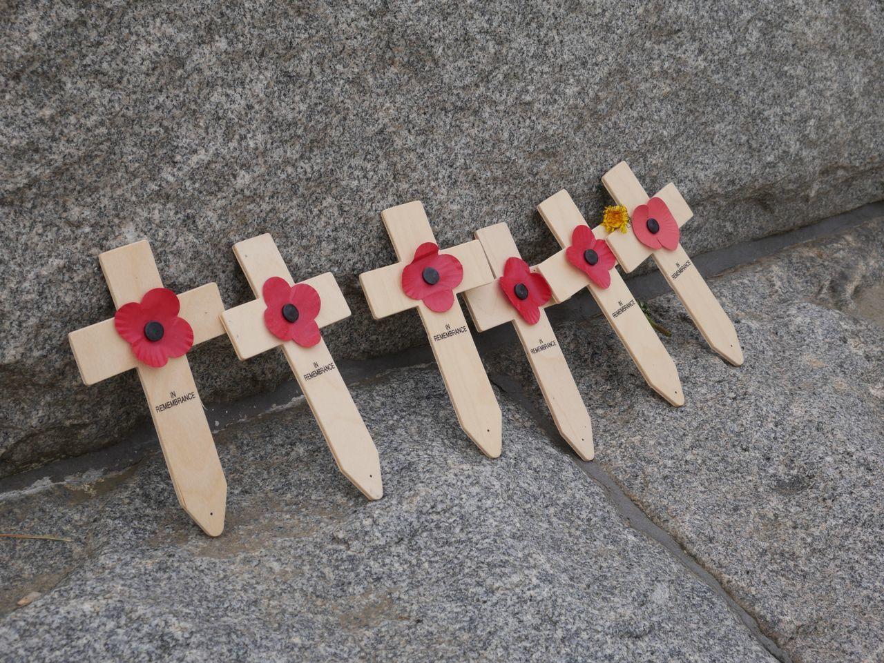In Remembrance Poppy Poppies  Cross Rememberance Ww1
