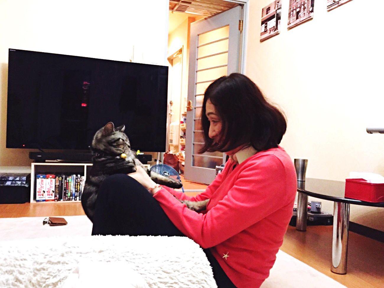 Two Is Better Than One cat & human love cat love animal harmony happy wonderful family joy abundance light No animals no life Brightness Is Myfuture
