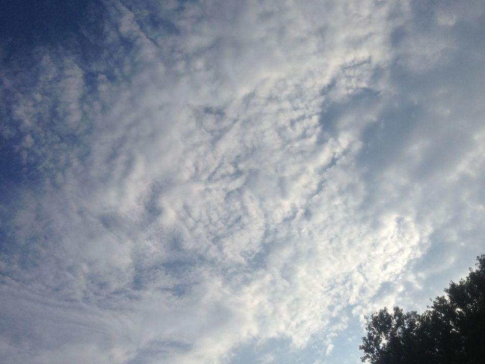 Cloud_collection  Crazyclouds Picturesintheclouds Clouds Cloudporn Clouds And Sky Cloudscape