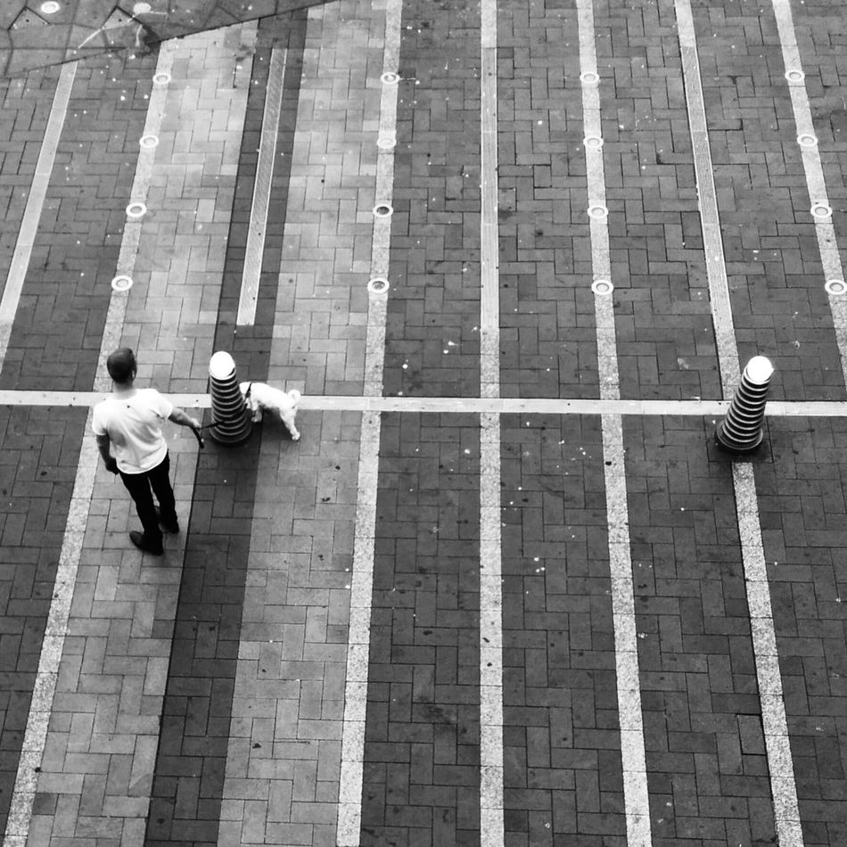From Above  Street Photography