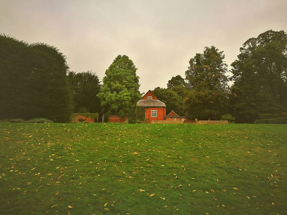 Building Exterior Architecture Tranquility Landscape Field Growth Beauty In Nature Scenics Solitude No People Caversham Vintage Photography Vintage Style Mobilephotography England 🌹 TakenwithhuwaeiP9 EyeEm Nature Field